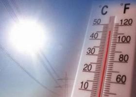 Votaremos a 40 grados y m s for Cocinar a 40 grados